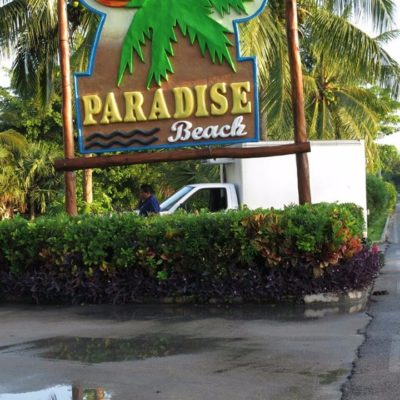 CASI MUERE EN LAS FAUCES DE UN COCODRILO: Reportan feroz ataque a una persona que se metió a nadar en una piscina del Club de Playa Paradise Beach en Cozumel