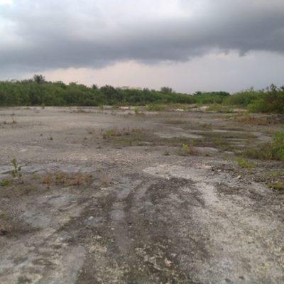 EL DAÑO ES PEOR QUE EN TAJAMAR: Denuncian otro caso de devastación de manglar y humedales en la zona de Punta Nizuc en Cancún