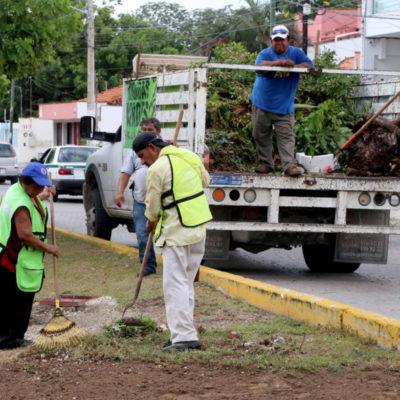 Suman más de 11.8 millones de m2 de limpieza de áreas verdes en Cancún