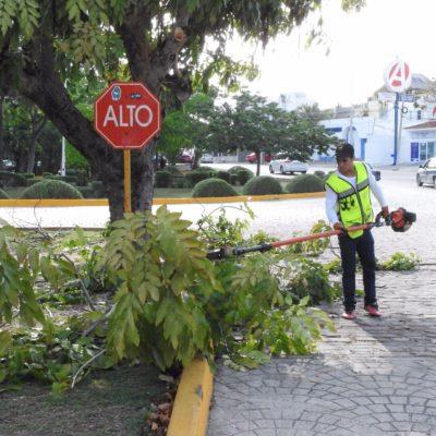 Rehabilitan 98 parques de Cancún; confirma Alcalde inversión para domos y gimnasios