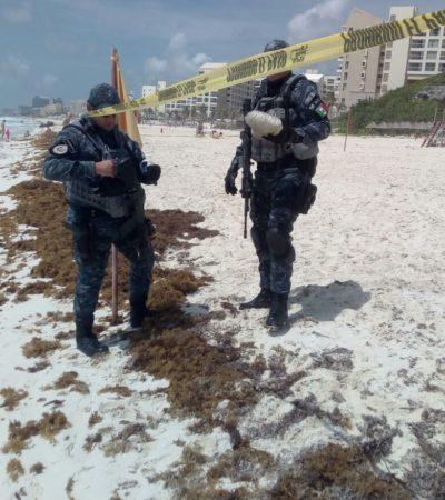 Aseguran dos paquetes con droga que recalaron en playa de la Zona Hotelera de Cancún