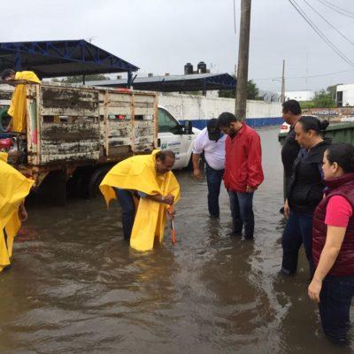 Provocan lluvias de 'Franklin' inundaciones de calles en Playa del Carmen; alcaldesa pide mantener la calma