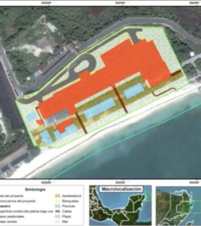 VIDEO | RIU NIZUC, 'TERCO Y DEPREPADOR': El trasfondo y las anomalías de un proyecto hotelero impuesto desde arriba a costa de Cancún