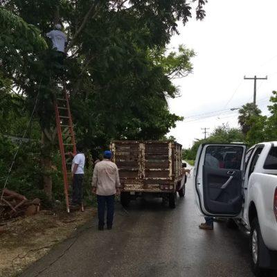 Carrillo Puerto, sin daños mayores afectaciones tras el paso de 'Franklin'