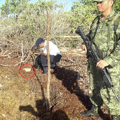 Recala paquete con marihuana en playa entre el parque Tres Ríos y Punta Maroma