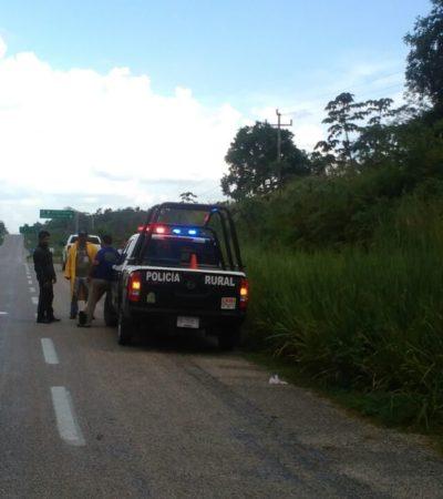 ASESINAN A LABRIEGO EN CAOBAS: Presuntos abigeos matan a hombre que cuidaba un rancho al sur de Quintana Roo