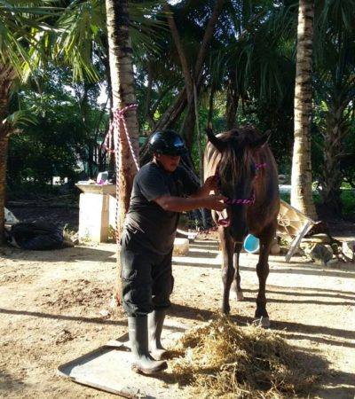 No bajar la guardia en materia de seguridad, pide Romalda Dzul a la policía montada de Tulum