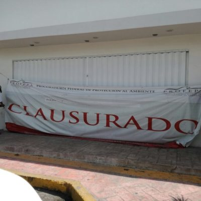 Levanta Profepa sellos de clausura en obra de la Apiqroo en terminal marítima de Puerto Juárez
