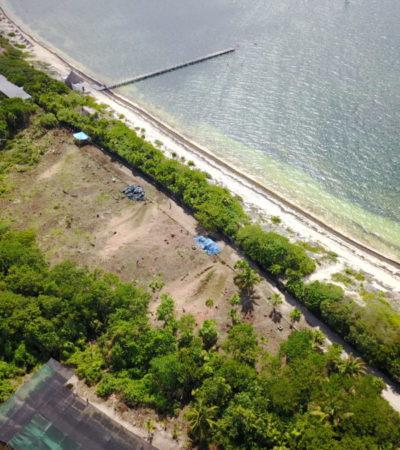 INICIAN DESMONTE PARA POLÉMICO HOTEL: Se confirma mediante sobrevuelo tala de terreno para construir el Riu Riviera Cancún