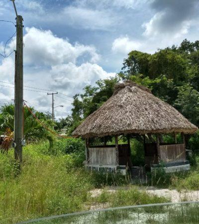 ABANDONO EN EL CORAZÓN DE LA ZONA MAYA: Denuncian falta de atención en la colonia Emiliano Zapata de FPC