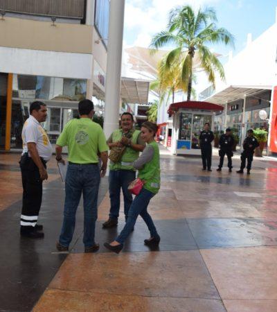 Evacúan Plazas Outlet de Cancún… por simulacro
