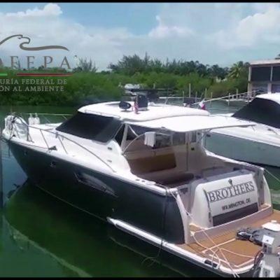 Inicia Profepa procedimiento a Marina Kaybal en Cancún