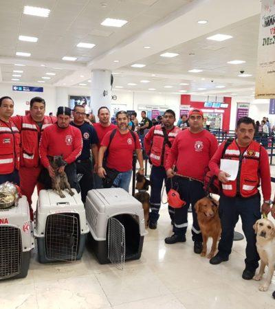 Van 'Topos' cancunenses a la zona de desastre