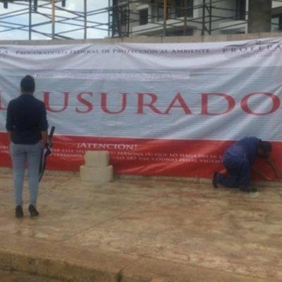Verifica Profepa que proyecto 'Ynfinity' acate imposición de clausura en Malecón Tajamar
