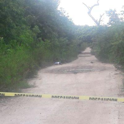 HALLAN EJECUTADO EN PUERTO MORELOS: Encuentran cuerpo en área verde cercana a un camino de terracería; suman 8 casos en el año