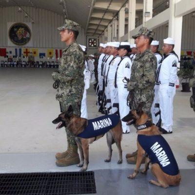 Instala la XI Zona Naval dos centros de acopio en Chetumal para recibir ayuda para damnificados del sismo