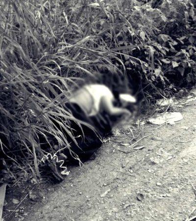 HALLAN A EJECUTADO EN LA REGIÓN 247: Encuentran cadáver en área verde del fraccionamiento Azul Bonampak de Cancún