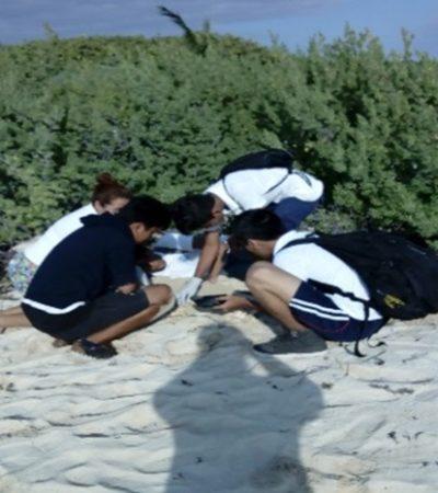 Alumnos del Cetmar participan en la limpieza de playas en Punta Brava y en la vigilancia de nidos de tortuga