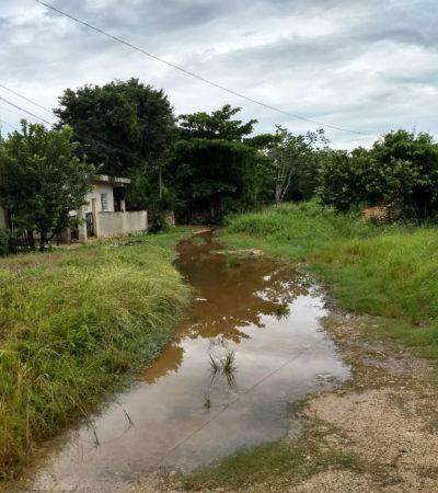 Cercados por encharcamientos en Felipe Carrillo Puerto