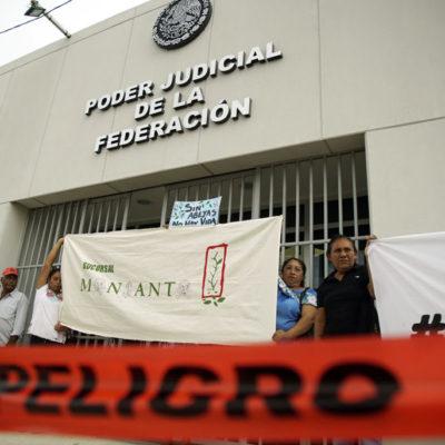 Acusan a Juez de Distrito de Campeche, encargado de vigilar la consulta sobre la soya transgénica, de favorecer los intereses de Monsanto