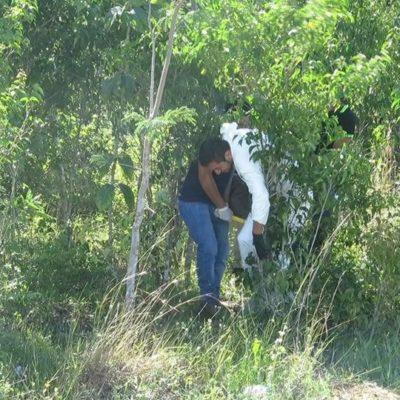 Encuentran cuerpo putrefacto en Cozumel