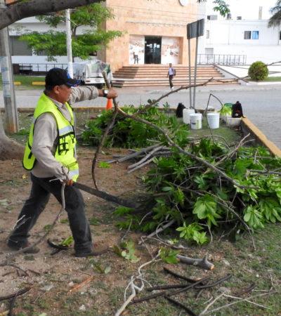 Completa comuna rehabilitación y limpieza de 189 parques y áreas verdes en Cancún