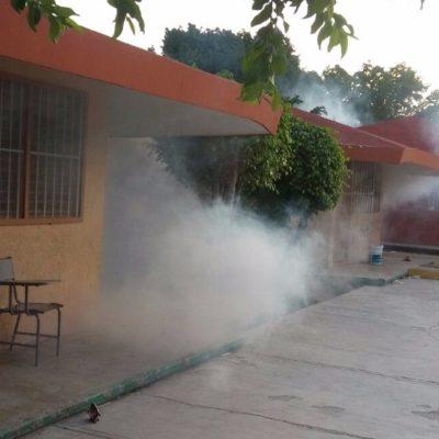 Realiza comuna nebulización de escuelas, colonias y predios para evitar enfermedades en Tulum