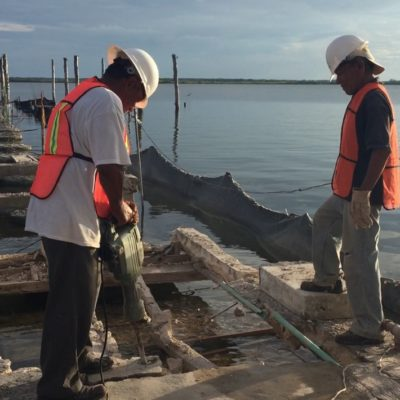 Inicia Apiqroo la reconstrucción del muelle de concreto del Club Náutico de Chetumal