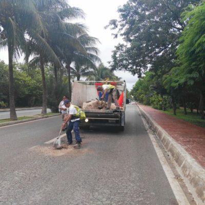 CHAFEA FONATUR EN CANCÚN: Con sascab tapan baches en Zona Hotelera