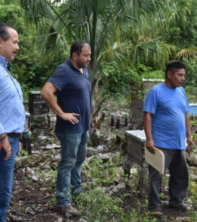 Impulsan Sedeso y CDI a grupos indígenas organizados en Quintana Roo