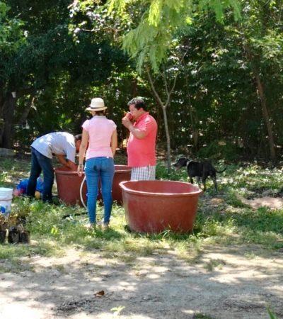 Dan ultimátum a vendedores de plantas en el parque Kabah