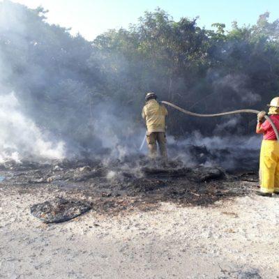 Incendio consume lote de llantas en Cancún y la humareda de vio hasta Isla Mujeres