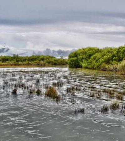 Rechazan autoridades de OPB intención de crear Área Natural Protegida en Bacalar