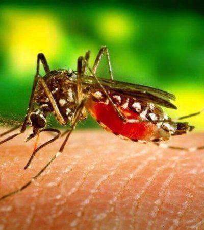 Fallece mujer en Cozumel por dengue hemorrágico