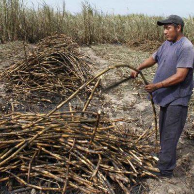 Autoriza Semarnat construcción de nuevo ingenio en Bacalar; preocupa a ejidatarios posible contaminación de la laguna por uso de agroquímicos