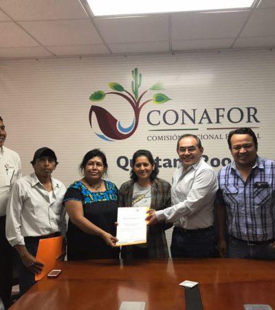 Certifica la Conafor a ejidatarios de Carrillo Puerto