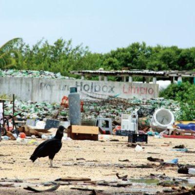 VEINTE PESOS POR HABITACIÓN OCUPADA: La comuna ya no puede con la basura; preparan impuesto a hoteles en Holbox, anticipa Alcalde