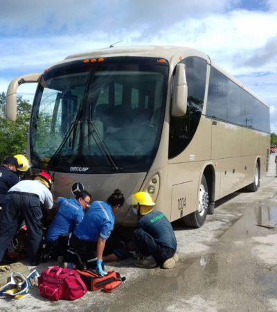 Muere mociclista en Mahahual al incrustarse debajo de un autobús