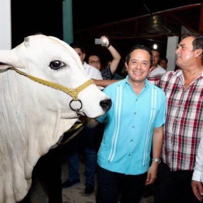 Recorre Gobernador La 'Expofer': la feria abre oportunidades para diversificar la economía del sur, asegura Carlos Joaquín