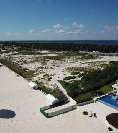 Proyecto de hotel junto a playa Delfines tiene Manifestación de Impacto Ambiental en regla: Semarnat