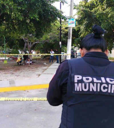 Encuentran osamenta en parque de la SM 59 de Cancún