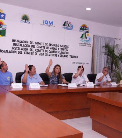 Comisión de Ecología analizará solicitud de nuevos integrantes en Tulum