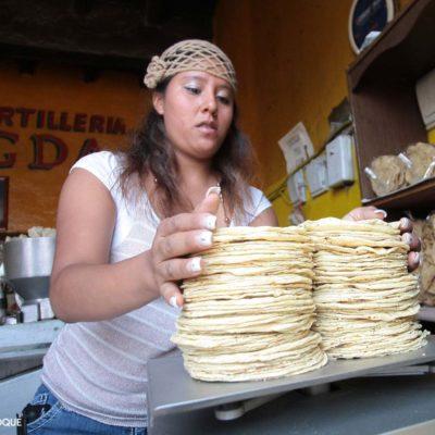 En riesgo de cerrar o trabajar en la clandestinidad hasta el 30% de las tortillerías en QR ante crisis económica