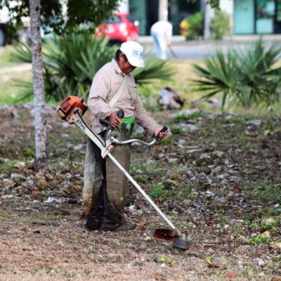 Se consolida un municipio con áreas verdes dignas, destaca Alcalde Remberto Estrada