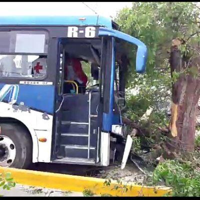 Dos pasajeros y el chofer heridos al chocar autobús de Autocar contra un árbol en Cancún