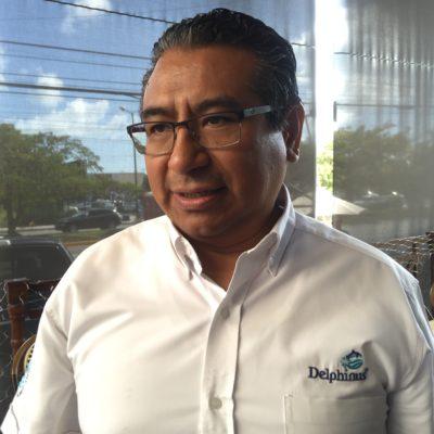 Piden foros plurales antes de votar por ley contra delfinarios