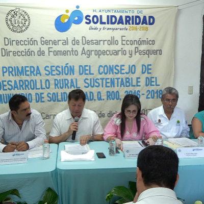 Crean en Solidaridad Comisión de Proyectos Estratégicos para Apoyo al Campo