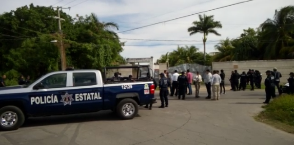 ¡TIGRE SUELTO EN CHETUMAL!: Fuerte movilización en la capital de QR para encontrar a un felino que se fugó de casa de supuesto hijo de ex diputado