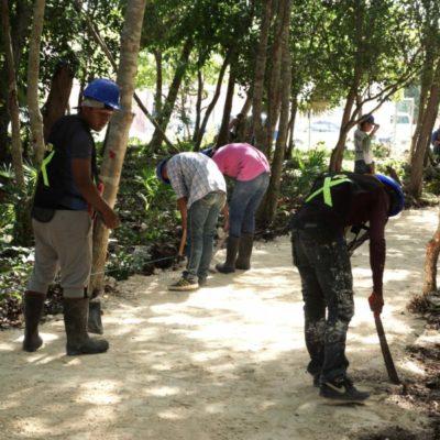 Avanza construcción de parque ecológico Punta Corcho, llamado a convertirse en pulmón verde de Puerto Morelos