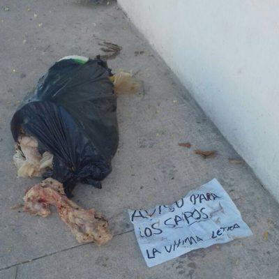Dejan restos de animales en una cubeta con supuesto mensaje de la delincuencia